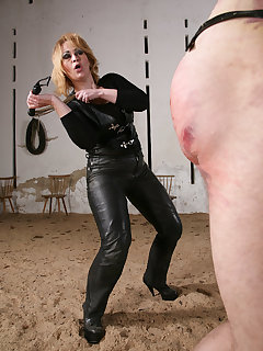 12 of DOMINA ROWENA IN THE OWK I.