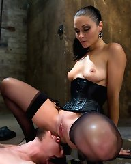 Lady Domina - all ladies domination fantasies.