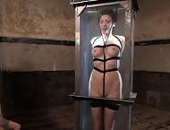 Two tied slavegirls are sucking cock