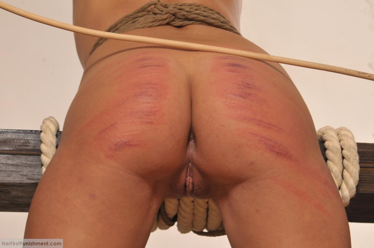 Tgp woodshed spankings
