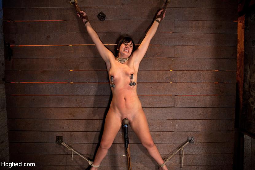 Ashley nude pic scott