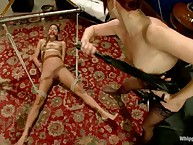 Realize Absent Transmitted to Dick! A lesbo s&m fantasy.