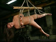 Extreme body suspension and flogging