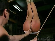 Suspended playgirl getting booty caned