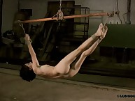 Extreme hanging suspension and flagellation