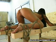 Screamed hottie is spanked herd