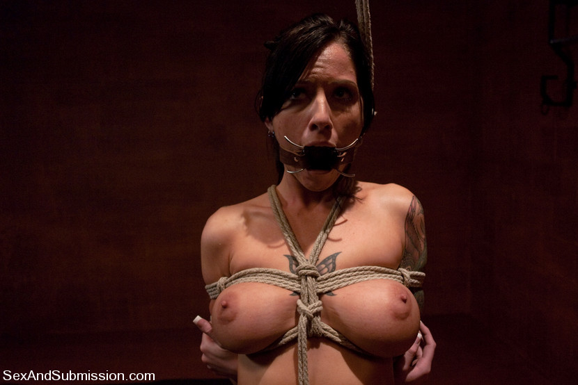 Free picturres of trannies in bondage