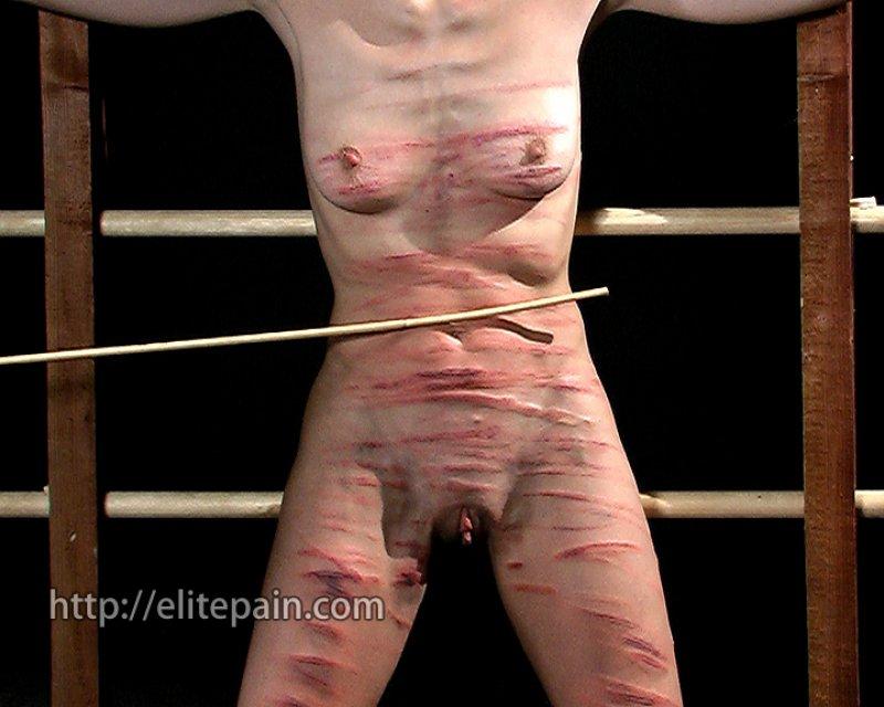 Nude perfect body pornstars