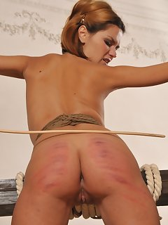 16 of A never-ending caning for a Russian cutie