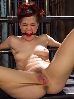 15 of New hardbody slavegirl pushed