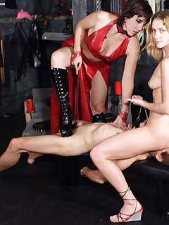 14 of Male humiliated in dungeon