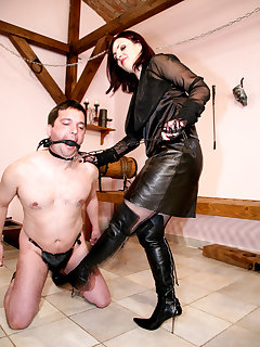 12 of MISTRESS HEELENA IN THE OWK I.