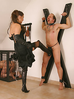 Femdom tied pictures