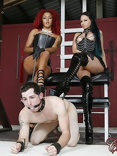 12 of Daisy Ducati and RavenBay